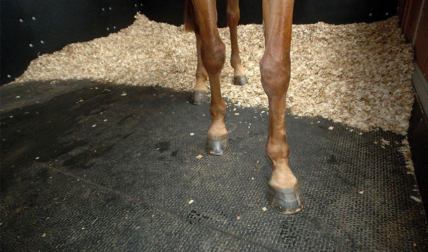 BELMONDO Kingsize Cover Stallbodenbelag aus Gummi im Pferdestall