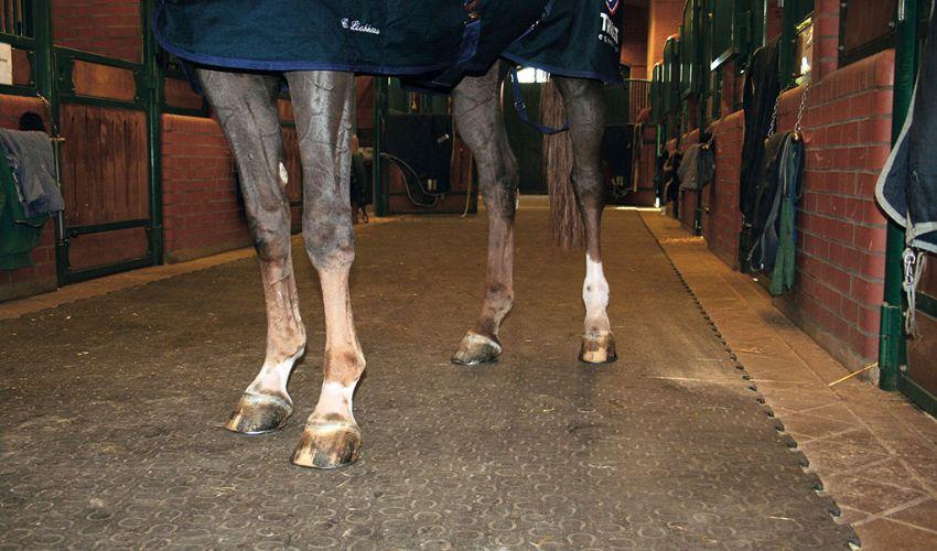BELMONDO Walkway trittsicherer Pferdestallboden aus Gummi