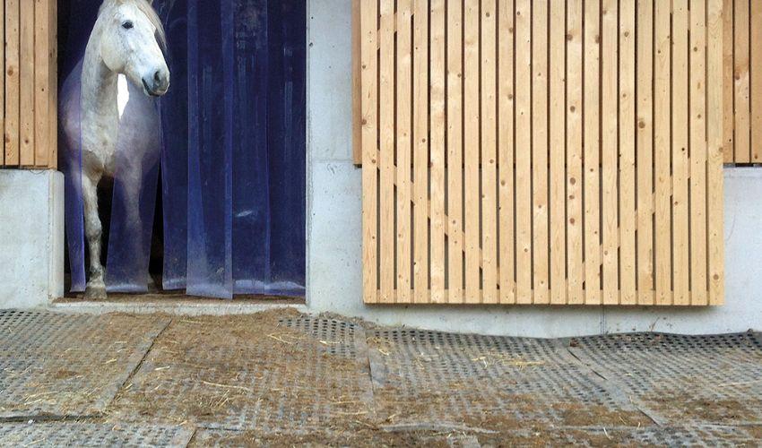 BELMONDO Flix Bodensystem aus Gummi am Koppeleingang