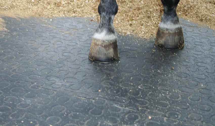 BELMONDO Trend Pferde-Stallmatte aus Gummi in der Box / Liegefläche