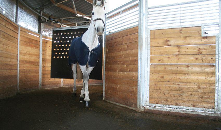 Die BELMONDO Horsewalker Gummimatte dämpft den Tritt, ist rutschsicher und wird für jede Pferde-Führanlage individuell maßgefertigt