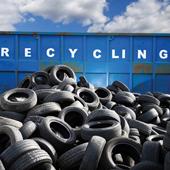 Recycling-Gummi schont Regenwald und Artenvielfalt