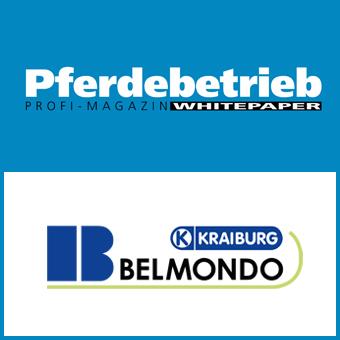 Whitepaper über BELMONDO®-Gummibeläge
