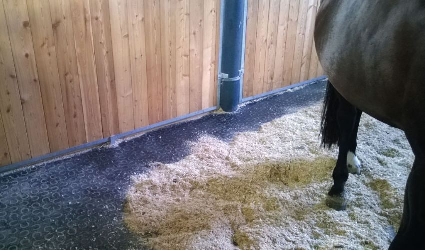 loosebox with BELMONDO Basic horse mats made of rubber for looseboxes / lying areas