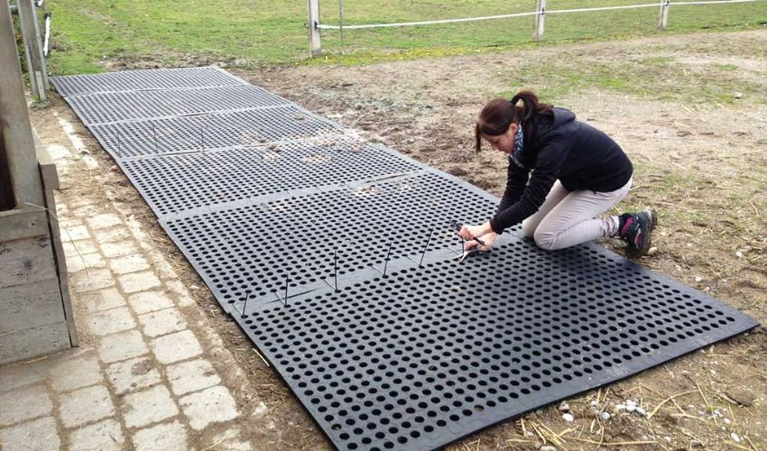 BELMONDO Flix perforated rubber mat at horses´ paddock entrance