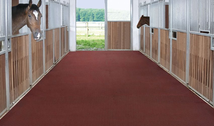 walkway with BELMONDO Style horse mat made of rubber
