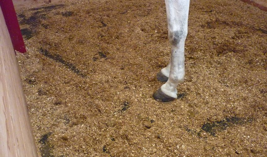BELMONDO Basic stable mat made of rubber for the loosebox / lying area in horse stables