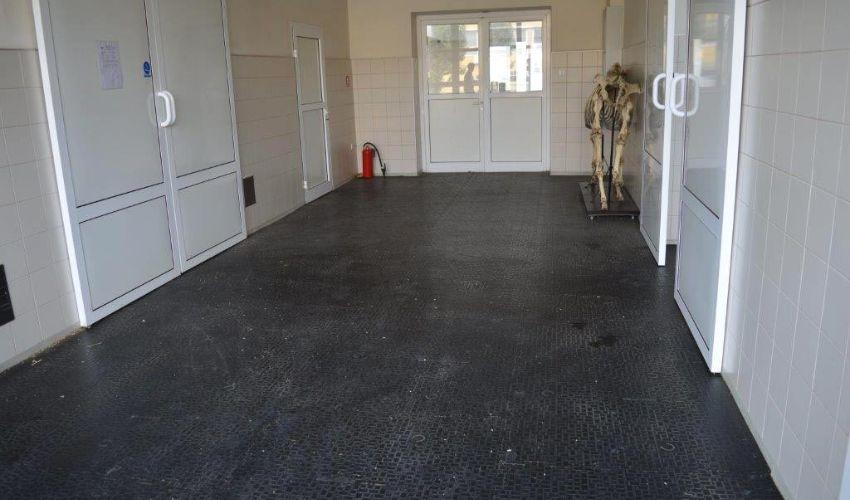 BELMONDO Walkpro rubber flooring in a horse clinic