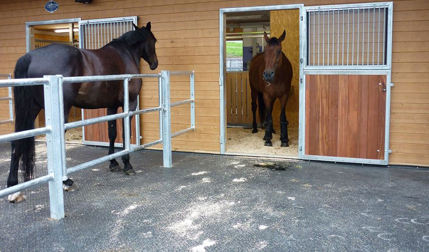 single paddock with BELMONDO Paddock slip resistant paddock mat for horse stables